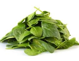 Dogs Can Eat Spinach | But Should They? [Best Advice]