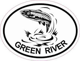 4inx3in Oval Trout Green River Sticker Car Decal Luggage Fishing Stickers Stickertalk