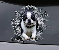 Sticker Boston Terrier Window Sticker Car Sticker Pet Car Etsy