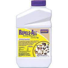 Bonide Repels All Animal Repellent 1 Qt Concentrate 237 At Tractor Supply Co