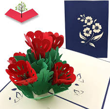Amazon.com : PopLife Lovely Flowers Pop Up Mother's Day Card - 3D  Anniversary Gift, Pop Up Birthday Card, Thank You, Congratulations,  Valentine's - for Mom, for Daughter, for Wife, for Grandma : Office Products