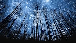 beautiful wallpaper hd night sky stars