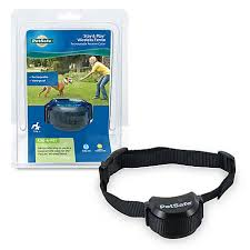 Petsafe Stay Play Wireless Fence Rechargeable Receiver Collar Pif00 14288 At Tractor Supply Co