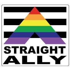 Straight Ally Square Rainbow Sticker 3 5 X 3 5 Gay Pride Supporter Lgbt Pride Car Bumper Decal Pride Shack