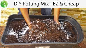 potting mix vs potting soil ez