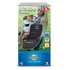 Petsafe Stubborn Dog In Ground Fence Dog Fence Systems Petsmart