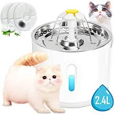 Amazon.com: Myra Parker Pet Fountain, 81oz/2.4L Stainless Steel Automatic  Cat Water Fountain Dog Water Dispenser with 3 Replacement Filters for Cats,  Dogs, Multiple Pets: Home & Kitchen