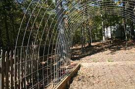Building A Permanent Greenhouse With Cattle Panels Part 1 Homegrown