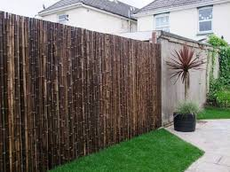 thick carbonised black bamboo fencing