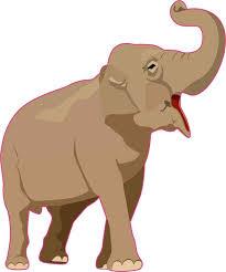 5in X 6in Elephant Vinyl Sticker Stickertalk