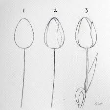 simple steps to drawing perfect flowers