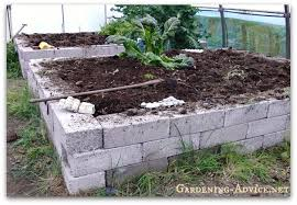 building raised garden beds building