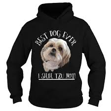 funny best shih tzu shihtzu ever dog