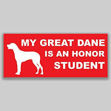 Amazon Com Jb Print Magnet My Great Dane Is An Honor Student Dog Mom Vinyl Decal Sticker Car Waterproof Car Decal Magnetic Bumper Sticker 5 Kitchen Dining