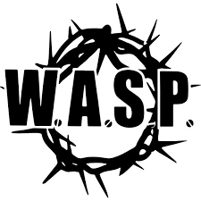 W A S P Band Logo Decal Sticker Wasp Band Logo Decal