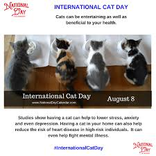 INTERNATIONAL CAT DAY - August 8 ...