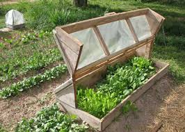 cold frame plans for your winter garden
