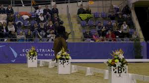 The Sydney CDI - Wendi Williamson and Don Armour MH 2nd Equestrian NSW  Grand Prix Freestyle - YouTube