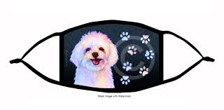 Maltipoo Products