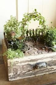 indoor fairy gardens fairy garden