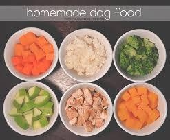easy to make homemade dog food recipes