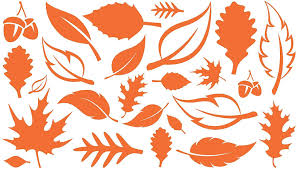 Amazon Com Wall Sayings Vinyl Lettering Set Of 24 Fall Leaves Art Decal Quote Sticker Home Decal Orange Home Kitchen