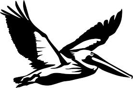 Flying Pelican Wall Decal Pelican Tattoo Pelican Art Silhouette Art