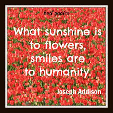 smiling is contagious quote smiles flowers flower quotes