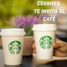 Cevamex Mexico City Mexico Facebook