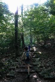Bearfence Trail Shenandoah National Park Jarod Goenner