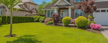 lawn care landscaping services the