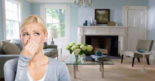 stinky fireplace syndrome causes and