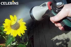 garden hose nozzle sprayer reviews