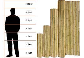Bamboo Fencing 8 Foot High Sunset Bamboo Sunset Bamboo