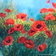 my love red poppies