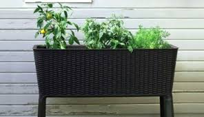 large rectangular garden planters