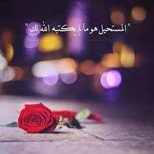 صور حلوه جديده صور جميلة جدا جديد صباح الورد