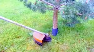 How To Cut Grass Around Trees Without Hitting Bark Brush Cutter Lawn Mower Edge Trimmer Protection Youtube
