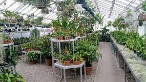 urban farming techniques types ideas