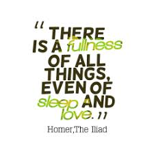 there is a fullness of quotes by homerthe iliad × the