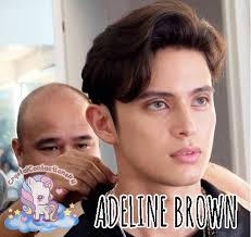 ✅ ADELINE BROWN by Dream Color 1 Series... - Crystal Contact Lens ...