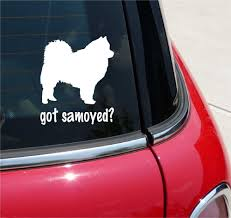Got Samoyed Samoyeds Sammie Dog Graphic Decal Sticker Art Car Wall Decor We Show Our Decal On The Rear Of A Ver Car Window Stickers Car Stickers Sticker Art