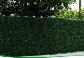 Home Garden Decor Artificial Grass Fence Panels Hedges View Artificial Grass Fence Sunwing Product Details From Sunwing International Co Ltd On Alibaba Com