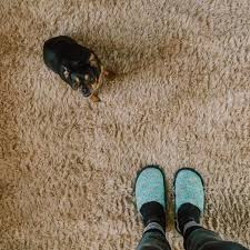 toronto carpet cleaning rug cleaning
