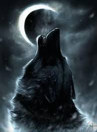 really cool wolf wallpapers 263x355