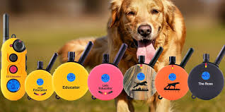Collartron Training Collars For Dogs Bark Control Working Pets