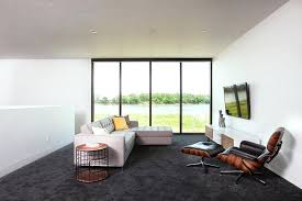 gray carpet living room bedroom home