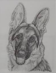 German Shepherd Painting by Vera Smith