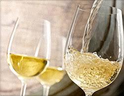 Top White Wine Varietals