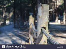 Beautiful Rustic Wooden Post Fence Roped With Park And Forest Stock Photo Alamy